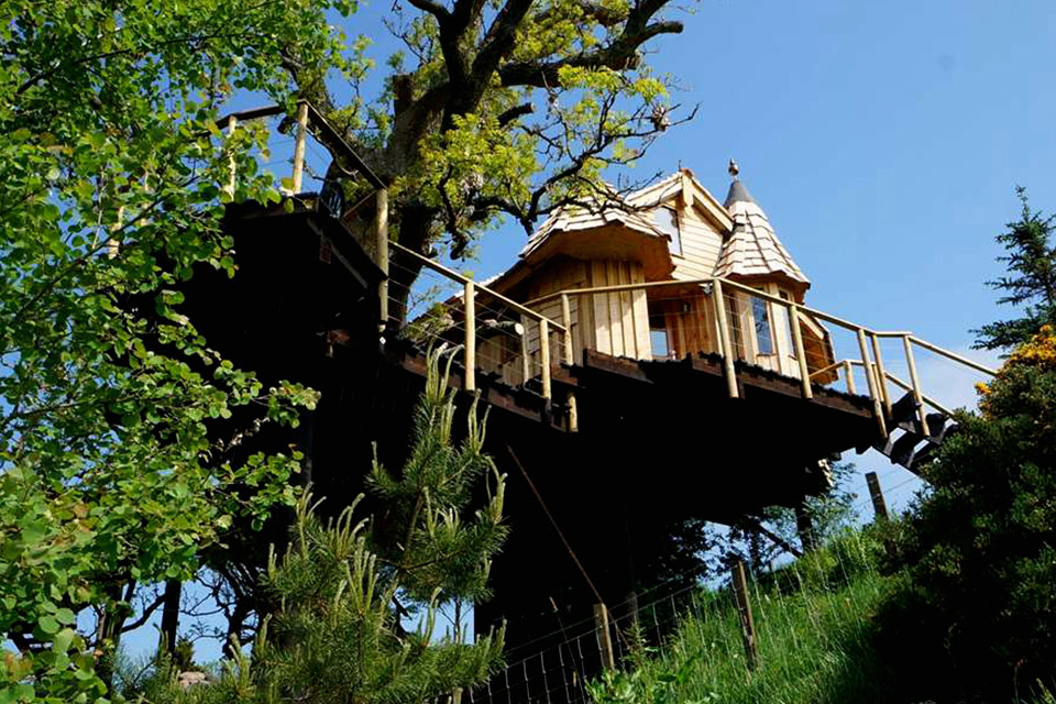 vacances week-end balades insolites arbre cabane
